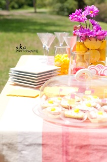 pink, bridal shower, outside, wedding shower, tampa fl, pink and yellow